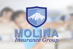 molina insurance group